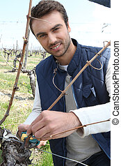 A grape grower