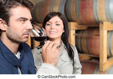 par, vinho, provando, adega
