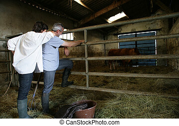 Farmer and wife stood in barn