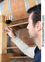 Winegrower observing