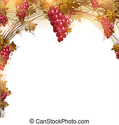 red grape - Illustration of red grape vine frame with...