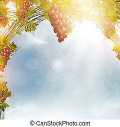red grape - Illustration of red grape vine frame over blue...