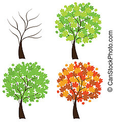maple trees - vector set of maple trees