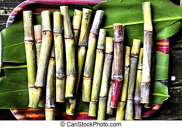Fresh Sugarcanes - Sugar Canes just cut for production of...