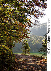 Early Fall in the Alps
