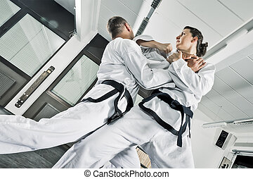 martial arts fighters - An image of two martial arts...