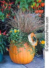 Colorful fall arrangement in a pumpkin - A colorful fall...