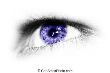 eye isolated