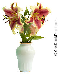 Lily in a white porcelain vase - The flowers of a lily in a...