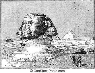 Sphinx, near the ruins of Memphis, Egypt, vintage engraving...