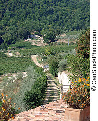 terrace with the view on vineyards in Tuscany