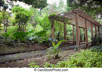 Wooden Pergola in park - Wooden Pergola with footpath...