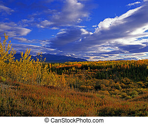 Pelly, montanhas, Yukon, Canadá