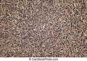 Cumin Seeds for use as background