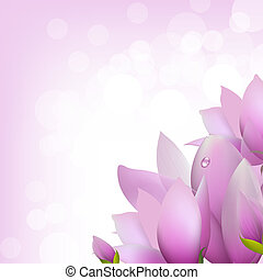 Magnolia With Bokeh, Vector Illustration