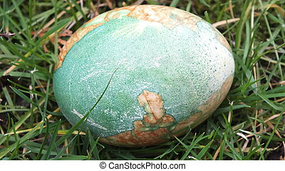 decorated Easter egg in grass