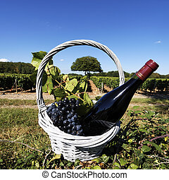 red wine spirit - red wine bottle and grapes in a basket