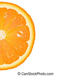Half Of Orange, Isolated On White Background, Vector...