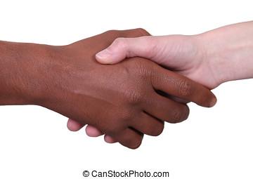 ethnique, diversité, Symbole
