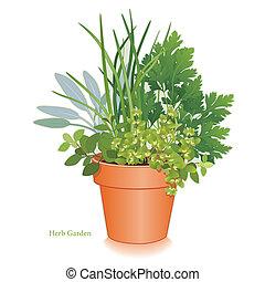 aromate, jardin, argile, pot fleurs