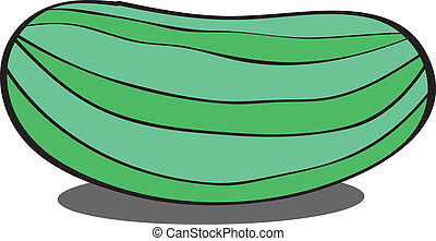 Zucchini EPS10,vector on white background