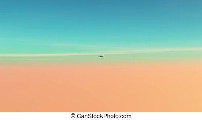 airplane - image of fighter