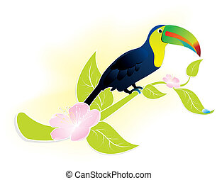 toucan bird - exotic bird Toucan sitting on a flowering...
