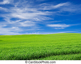 green field over blue cloudy sky landscape