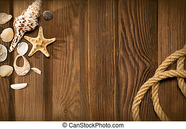 rope and shells  on weathered wood background