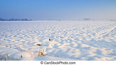 Snowscape - Snowy landscape with snow covered fiels under...