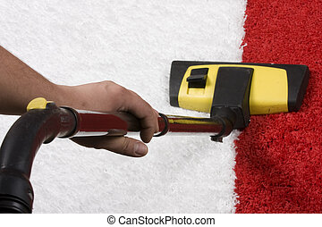 cleaning - carpet cleaning