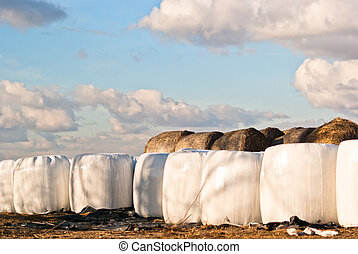 silage, bales, hay bales, plastic wrap cover for wheat...