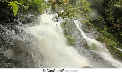Tropical Waterfall - Waterfall in rainforest in the Choco...