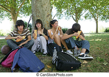 Teenagers picnic in the park