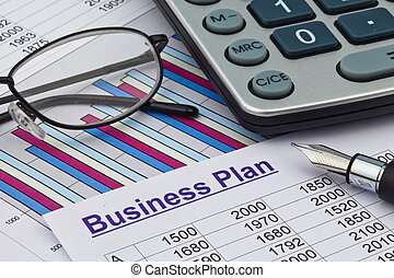 the business plan for a company or business establishment...
