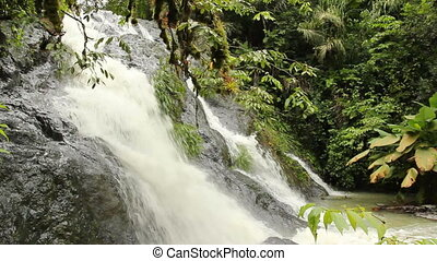 Rainforest waterfall - Waterfall in rainforest in the Choco...