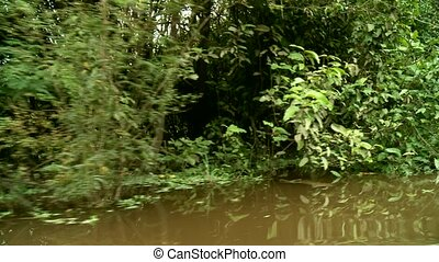 Amazon River, Southamerica - Shipping On Amazon River