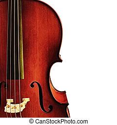 Cello Detail over White