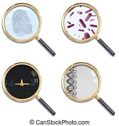 Magnify - Illustration of four isolated magnifying glasses