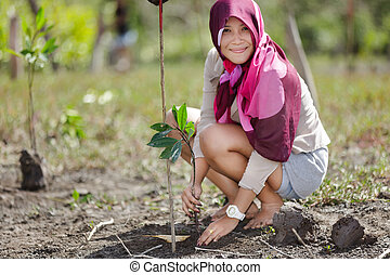 mangrove reforestation - thai woman planting new mangrove...