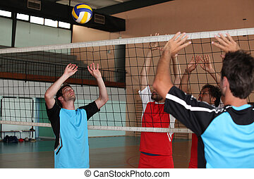 Volleyball players on indoor court