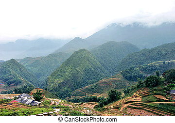 Sapa - Northvietnam - View on ricefields in the mountains of...