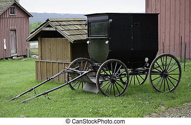 Amish horse buggy - amish horse buggy parked next to shed &...