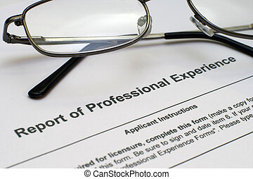 Professional experience form