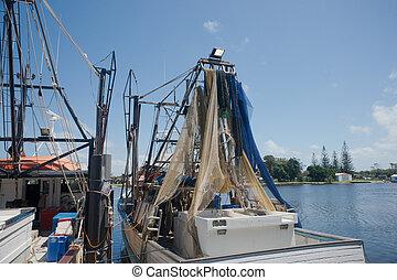 puerto, pesca, barco