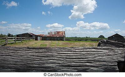 rural, escenas, entre, Ulmarra, YAMBA