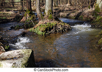 Two rivers - Two wild rivers in the forest turn inti the one