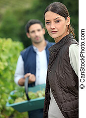Couple picking grapes off vine