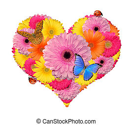 flower heart isolated on white background
