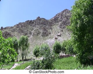 Fruit trees in Badakhshan - Crops and fruit trees growing in...